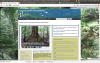LUQ DEIMS Home Page Snapshot
