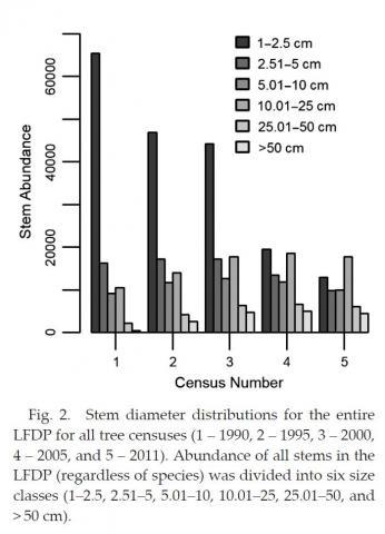 Figure 2 Stem Diameter Distribution