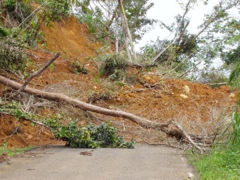 Figure 1. Many landslides are caused by destablization of slopes from road construction.